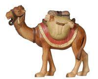 Kamel stehend.aspx