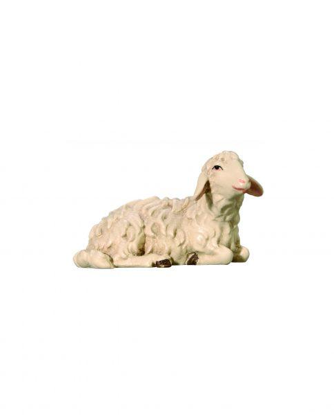053051 Schaf liegend