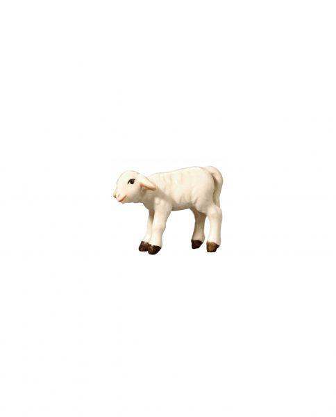 053062 Lamm linksschauend