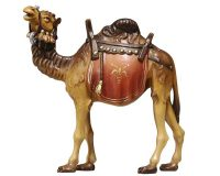 Kamel 170.aspx