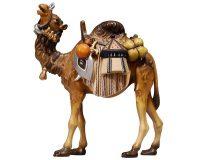 Kamel 171.aspx