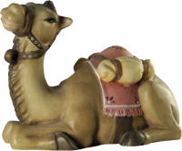 Kamel13